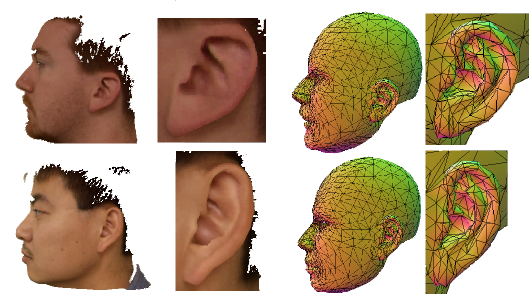 3D Morphable Model Construction for Robust Ear and Face Recognition